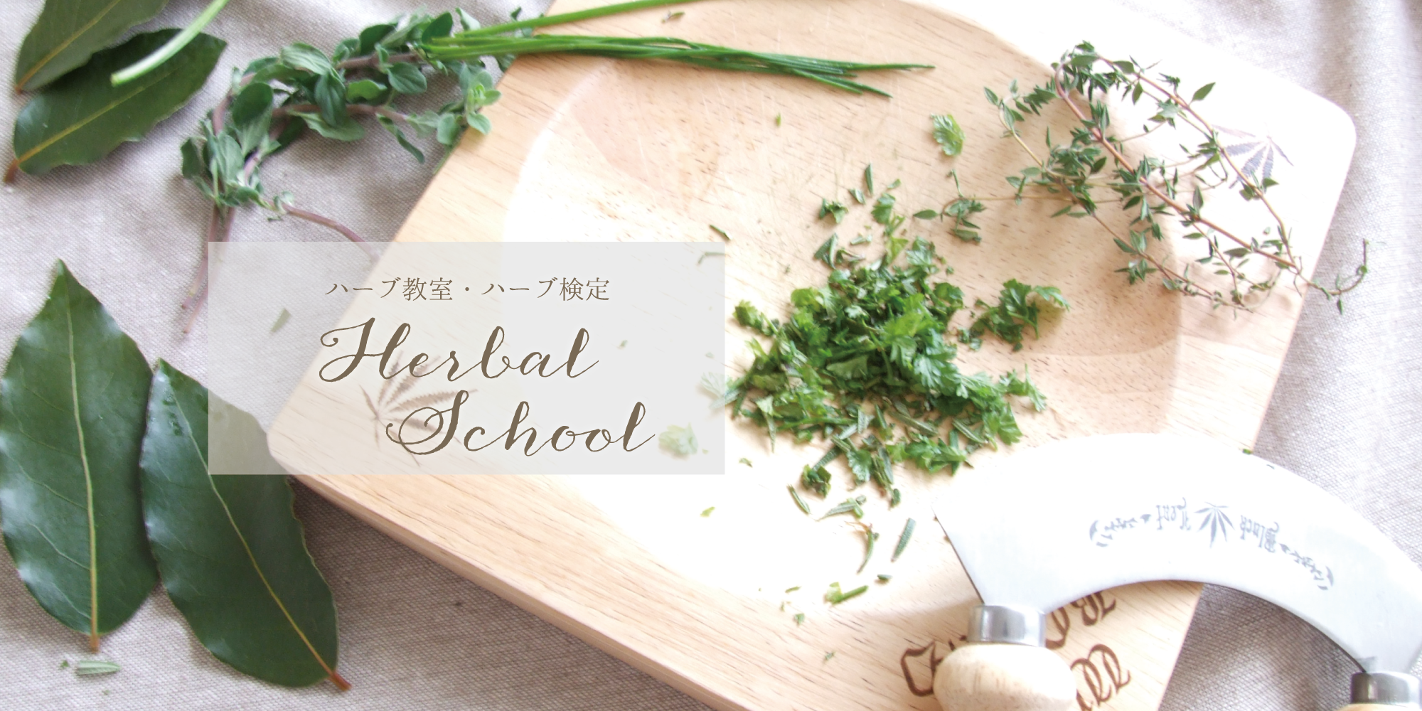 元気とキレイをつくるハーブ薬膳ごはん・ハーブ酵母パン ハーブ薬膳料理研究家 鐘尾淳子 | 熊本 体に優しい レシピ